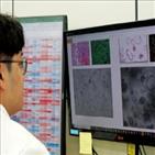 방광암,환자,효과,항암제,예측,연구,이드,교수,약효