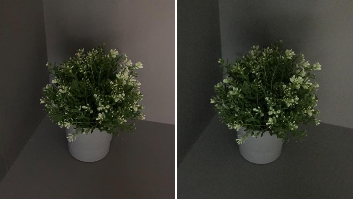 저조도 사진 비교 아이폰SE 2세대(왼쪽) 아이폰8(오른쪽)