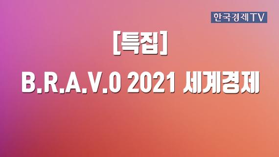 B.R.A.V.0 2021 세계경제
