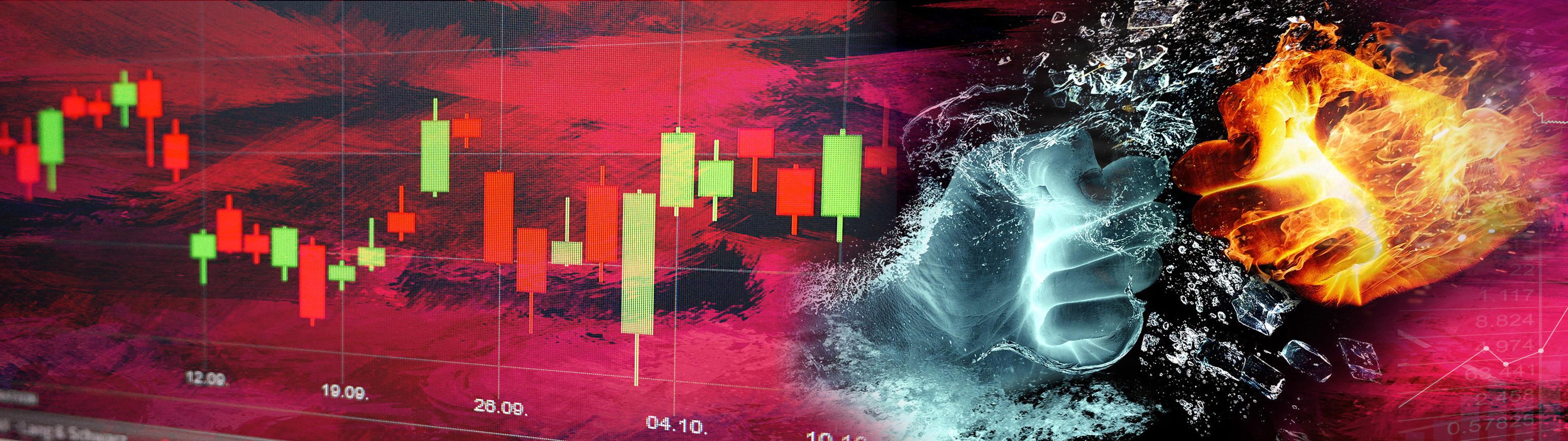 투자 불패