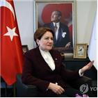 대선,대표,터키,훈련,공작