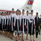 북한,응원단,선발,방문단,구성,기자단,악단,남쪽