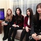 공연,레드벨벳,노래,생각,위원장,무대,관객