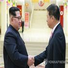 중국,부장,북한,대해,사이,위원장