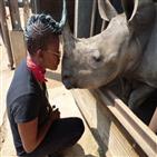 남아공,코뿔소,밀렵,부패,마리,정부