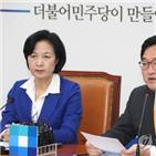 특검,국회,사건,민주당,불가