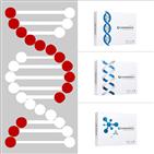 모발,탈모,유전자,검사,브랜드,서비스,시술