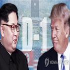 싱가포르,11일,오전,후보,김정은,전국,북한,실무회담,마지막,환자