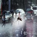 모기,질병관리본부,지난해,일본뇌염