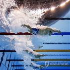 수영,오전,결승전,일본,도쿄올림픽