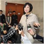 기자회견,손혜원,의원