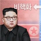 경협,정부,북한,북미,남북,미국,정상회담,관계자,지원,재개