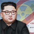 북한,보고서