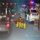 선고,음주운전,처벌