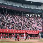 시범경기,관중,입장,광주,첫날,9천933