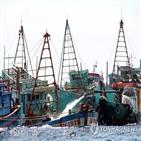 어선,인도네시아,불법조업,나포,베트남,외국