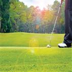 골프,하체,운동,스윙,트레이닝,여름,음식,근력,웨이트,변화