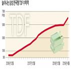 펀드,자산,투자,생애주기,한국형,운용,삼성,삼성한국형