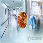 수막염,수막구균성,의심환자