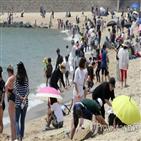 축제,해수욕장,단오,관광객,휴일,전국,이날,방문객,강원,체험