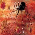 모기,불임,유전자가위,유전자,스퍼,특정,질병,타깃,카스9,기술