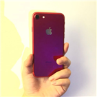 스마트폰,가격