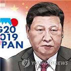 중국,주석,트럼프,일본,대통령,시진핑,미국,이번,정상회담,경제