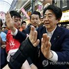 선거,연금,참의원,이번,유세,문제,정부,일본