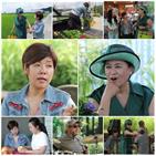 김미화,카페,박원숙,아들,가족,모던
