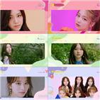 영상,앨범,로켓펀치,공개,핑크펀치