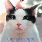고양이,사랑,나만,길고양이,김희철,개봉