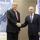 푸틴,러시아,터키,대통령,에르도안,시리아,전투기,미국,논의