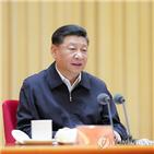 홍콩,중국,송환법,지도부,무력,투입,시위,시진핑,주석,문제