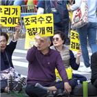 검찰개혁,집회,촛불집회,의원,민주당,국민,조국,검찰,자유한국당,대통령