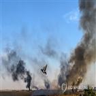 터키,시리아,작전,터키군,민간인,쿠르드,시리아인권관측소,마을