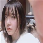 구혜선,안재현