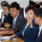 상한제,지역,지정,분양가,우려,분양가상한제,서울,고분양가,정비사업,물량