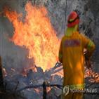 지역,산불,호주,화재,시드니,비상사태,발생,동부