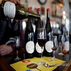 와인,프랑스,캠페인,알코올,포도주