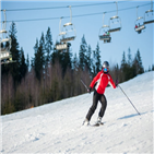 스키장,스키,시즌,인구,세대,올해