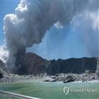 화산,분화,뉴질랜드,관광객,대한,화이트섬,이번,사망자,등급