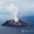 관광,화산,화이트섬,뉴질랜드,사람
