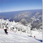겨울,스키,슬로프,리조트,레포츠,여행,상품,운영,하나투어,스키장