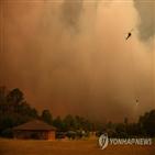 산불,지역,재난,소방대원,시드니,발생
