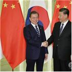 중국,한반도,문제,한중,관계,평화,인민일보,주석
