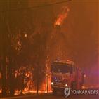 산불,지역,당국,호주,상황,불길,빅토리아주,해변