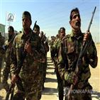 시아파,이라크,민병대,이란,조직,정부,정규군,격퇴,지원,미군