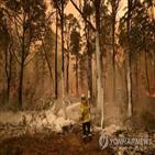 산불,호주,총리,모리슨,기후변화,화재,지난달
