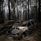 산불,호주,피해,기부,스타