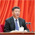시진핑,중국,관료주의,주석,회의